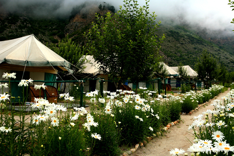 Banjara Camps