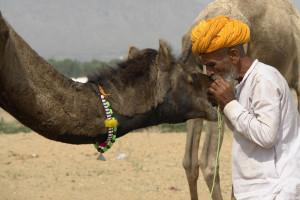 Pushkar 3