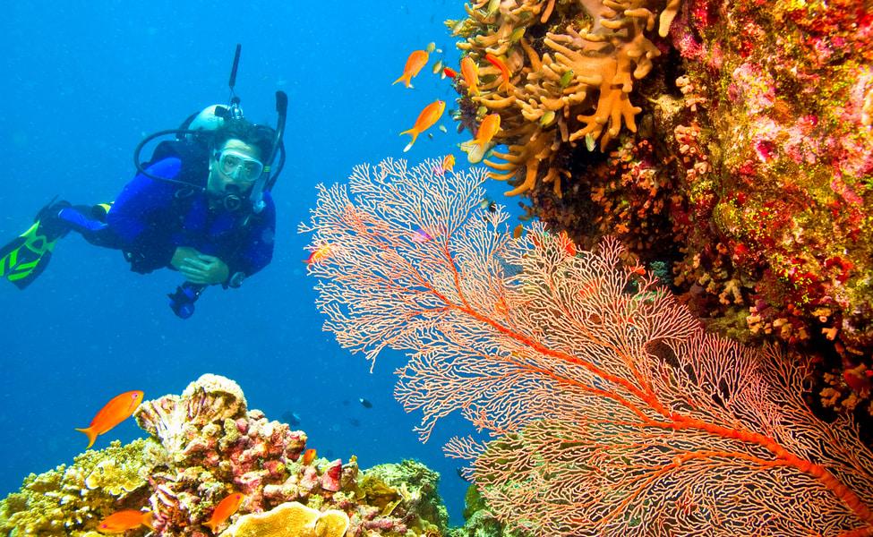 Andamans, Visit Andamans, Explore Andamans, Best Andamans Travel Agent, Best Andamans Operator, Visit Andaman Islands, Havelock Islands, Havelock, Radhanagar Beach, Scuba Diving in Andamans