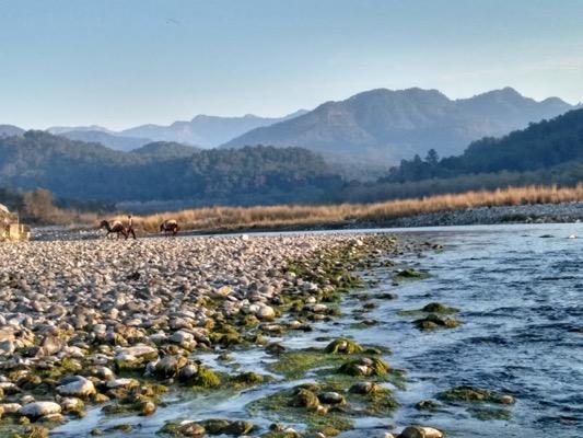 Jungle, River, Mountains, National park, Safari, Adventure
